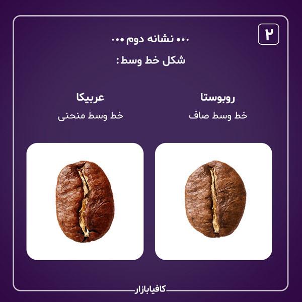 تفاوت عربیکا و روبوستا نشانه دوم